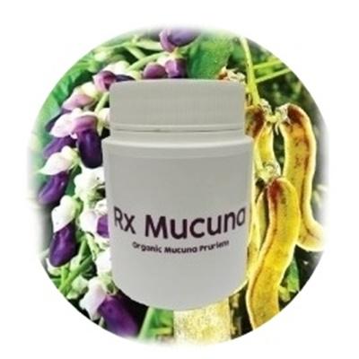 MUCUNA-400X400